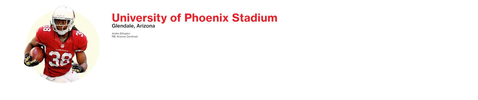 NFL_header_Arizona